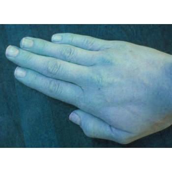 Hand Stick